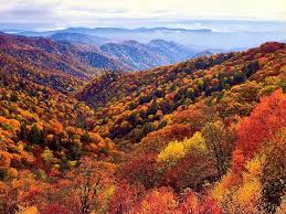 places to see in the united states top places to visit to see vibrant fall foliage worldnews