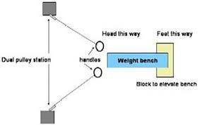 Bench To Weight Ratio The Gironda System T Nation