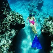 Hawaii snorkeling images Snorkeling in kauai hawaii in march getaway tips jpg