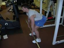 Bench Barbell Row Bent Over Barbell Rows Back Exercise