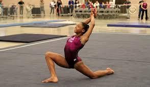 Desert Lights Gymnastics Level 9 Eastern And Western National Champions Flogymnastics