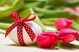 flowers easter egg beautiful lovely red tulip bow wallpaper for