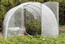 serre tunelle de jardin serre tunnel la serre de jardin pour votre tunnel