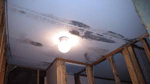 black light mold detection morris environmental author at mold testing inspections asbestos