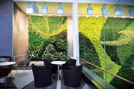 interior living walls sustainable architecture and building magazine