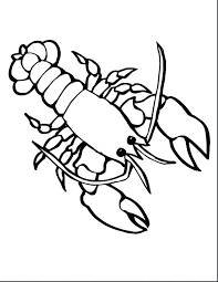 amazing interesting marines coloring pages new ocean life