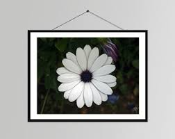 Daisy Room Decor Daisy Pictures Etsy