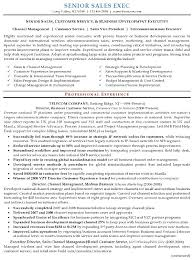 Sles Of Resume Templates Sle Resume Senior Sales Marketing Executive Page 2 Exles Of
