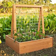 Vegetable Garden Planter Box Plans 10 Raised Garden Beds That Fit Any Backyard Space Wire Trellis