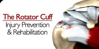 Common Shoulder Injuries From Bench Press Rotator Cuff Injury Prevention And Rehabilitation