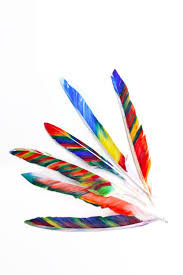26 best feather fun images on pinterest feather headdress