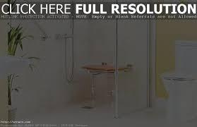home design ideas for the elderly bathroom designs for seniors elderly bathroom design home design