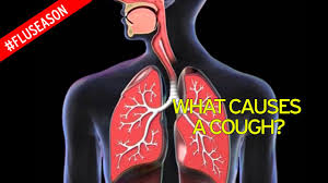 when i cough i get light headed what to do if your child has got a hacking cough and what to avoid