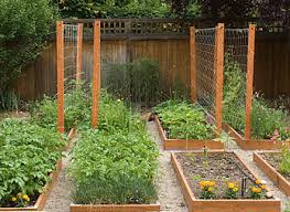 Garden Trellis Design by Vegetable Garden Trellis Gardening Ideas