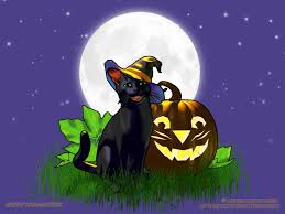 halloween background cat and pumpkin jack cat halloween wallpaper copyright robin wood 2006