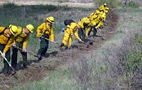 Wildfire Training by Local Training Teams Cheyenne Mountain Fire Fighters With Federal