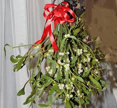 17 christmas garden ideas festive and organic holiday decorations