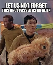 Funny Alien Meme - funny alien dump a day