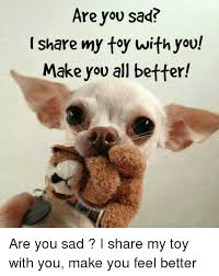 Feel Better Meme - are you sad i share my toy with you make you all better are you