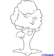 simple drawing of a tree coloring pages simple tree drawing ideas