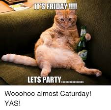 Yas Meme - its friday lets party chi wooohoo almost caturday yas caturday