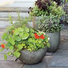 a container vegetable garden anybody can grow anywhere martha