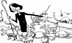 Herding Cats Meme - spo reflections on herding cats spo reflections