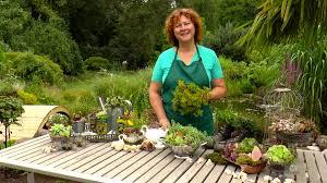 anlage eines minigartens mit sukkulenten der grüne tipp youtube