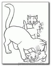 kitten coloring pages preschool kindergarten