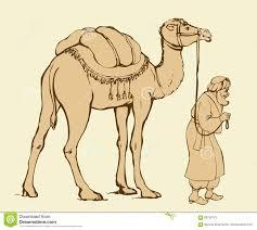 camel vector drawing illustration 51255111 megapixl
