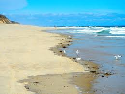 the best beach in cape cod magickalideas com