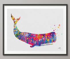 135 best whale images on pinterest whale a whale and draw