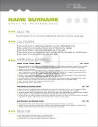 Professional Cv Template Free Professional Resume Templates Resume Format Download Pdf