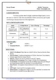 curriculum vitae sles pdf free download sle template exle of beautiful excellent professional