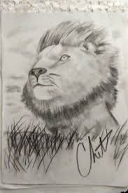 13 best i love animals images on pinterest drawings sketches