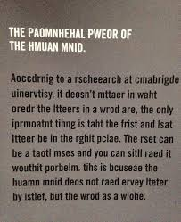 the brain can read scrambled words if the first and last letter