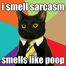 Sarcastic Cat Meme - i smell sarcasm smells like poop cat meme cat planet cat planet