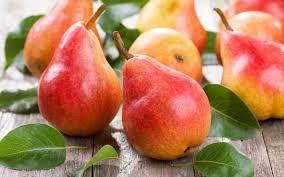 shree thakur traders welcome to thakur fruits