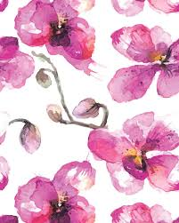 wall mural olivia poppy pink orchid wall mural
