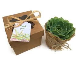 individual ornament gift boxes we specialize in unique succulent gifts and by succulentsandmore1