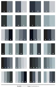 color combination with black black white color schemes color combinations color palettes