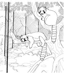 free coloring pages bobcat footprint clip art library