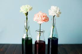 flower food coloring dye flowers food coloring mindsandvines
