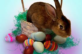easter bunny visits in palos verdes and egg hunts palos verdes