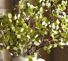 manzanita branches for sale faux manzanita branch pottery barn