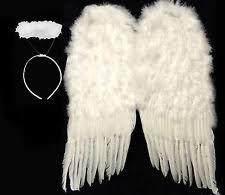 Halloween Costume Angel Wings Angel Wings Costume Ebay