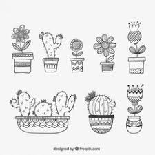 ce8125dfe0ba344c988120bbb9153c2e cacti illustrations and doodles