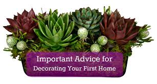 decorating first home 10 key tips for decorating your first home classic casual home