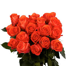 global roses globalrose fresh terracotta color roses 100 stems iguana medium