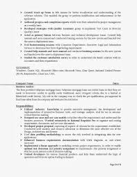 Resume Sample For Programmer by Senior Business Analyst Resume Samples Business Systems Analyst